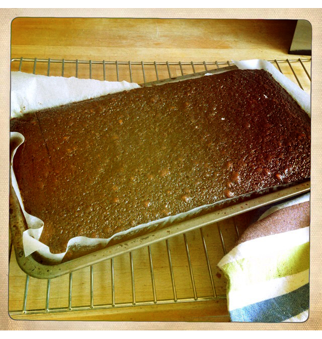 gingerbread-out-of-oven