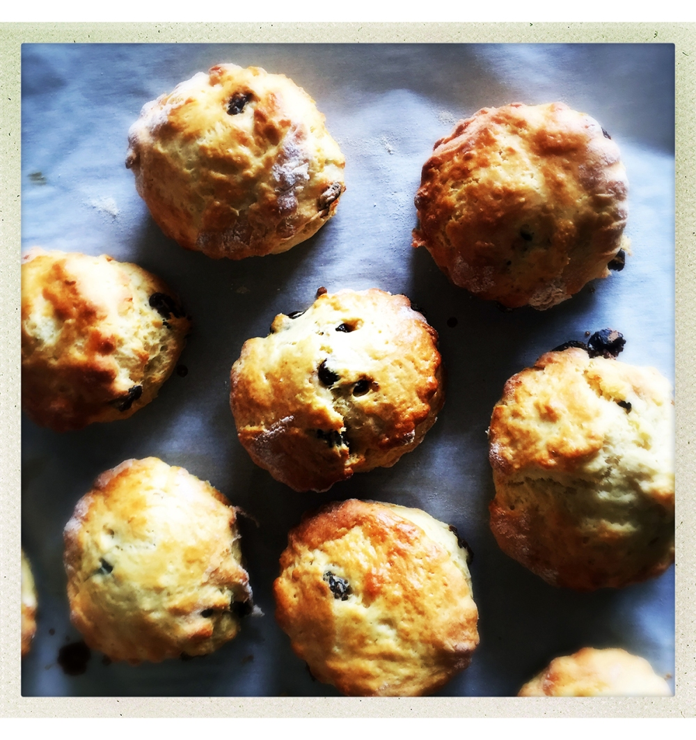 scones-on-tray-from-oven