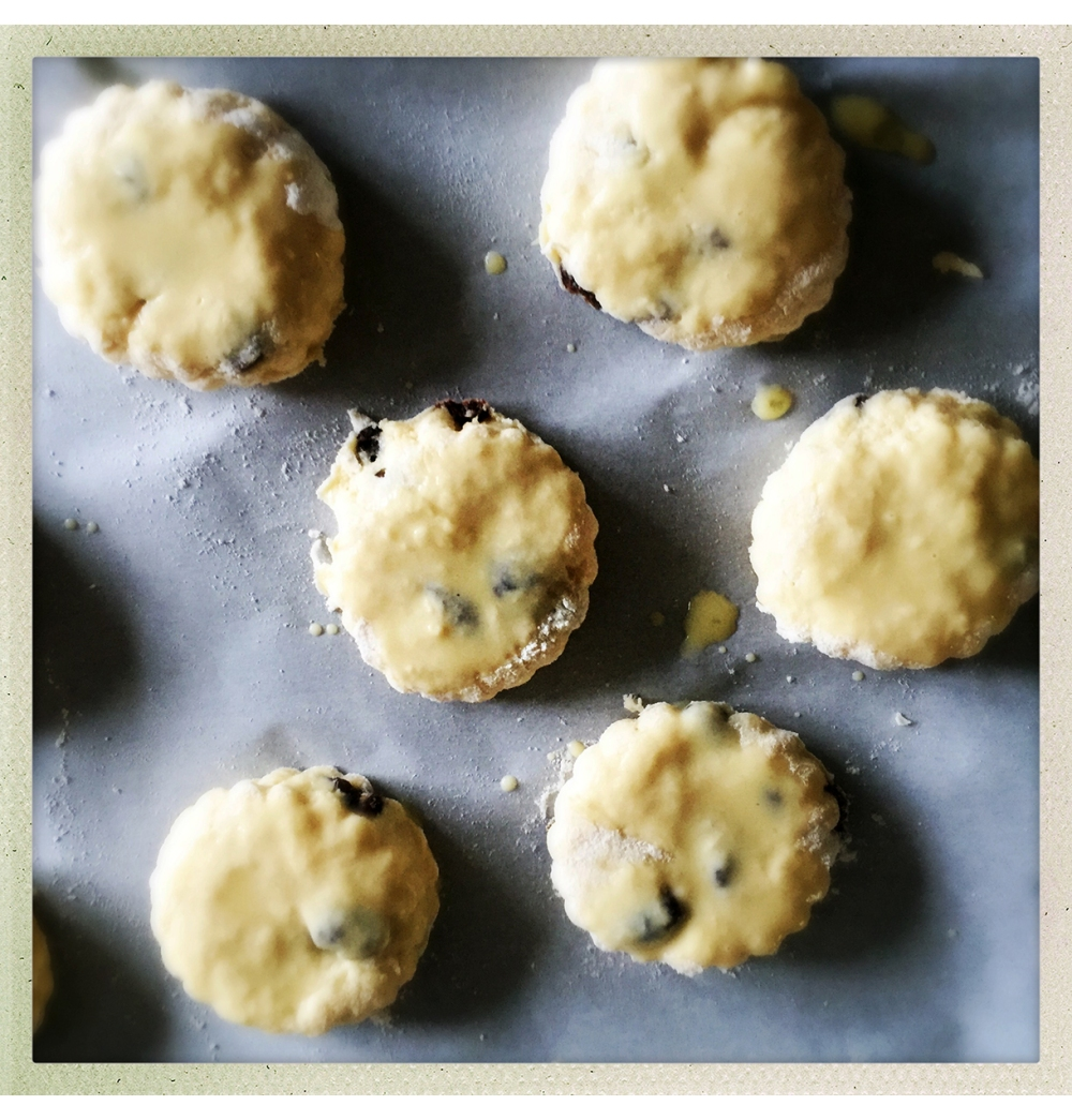 scones-on-tray-milk